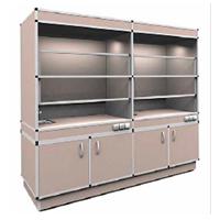 Шкаф вытяжной (на 2 рабочих места)